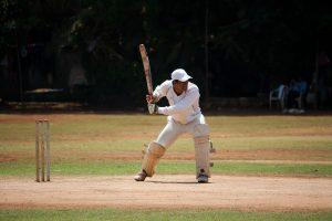 cricket 300x200 - cricket.jpg